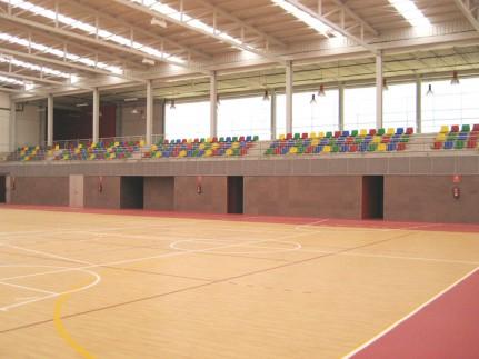 Pabellón polideportivo cubierto y pistas deportivas